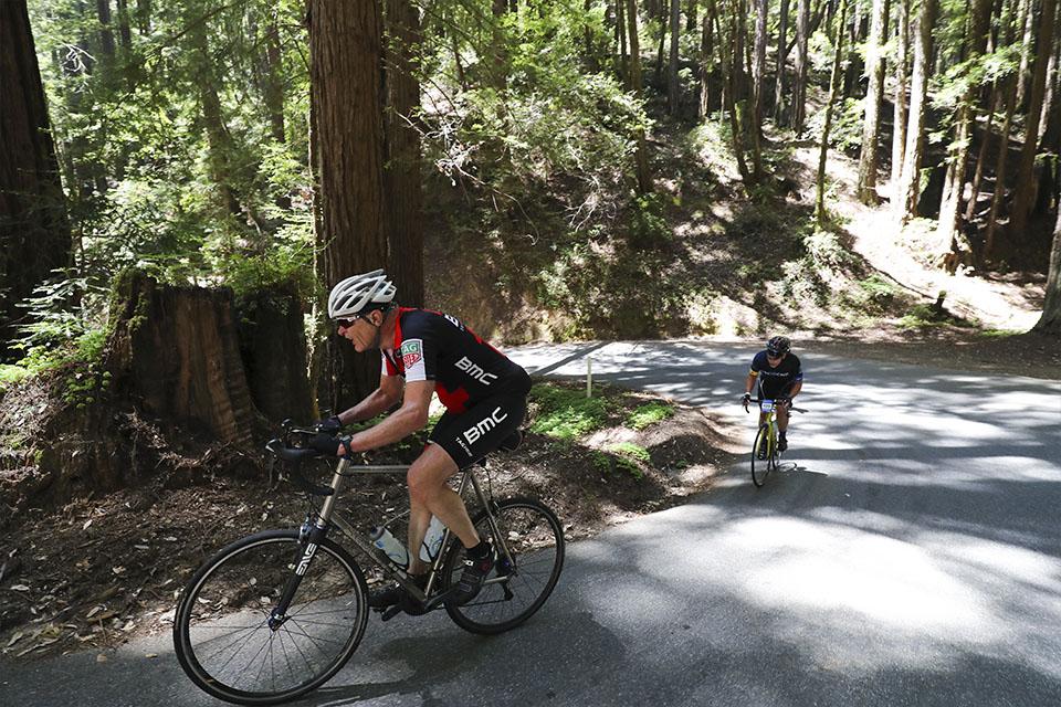Climb the unforgiving Kings Mountain Road