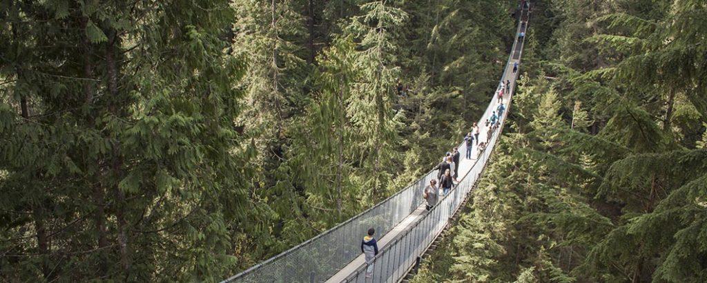 Suspension bridge through the Vancouver North Shore forest