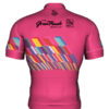 2019 Whistler GranFondo Special Edition Jersey Back